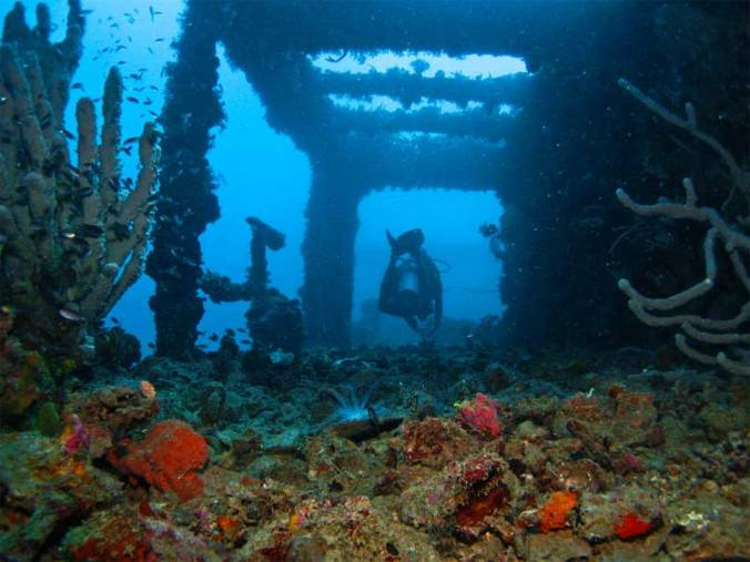 diving-in-the-philippines-coron-wreck.jpg